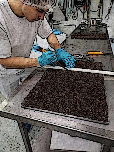 Finn schneidet Eisenreich Müsliriegel aus eisenhaltigen Lebensmitteln gegen Eisenmangel